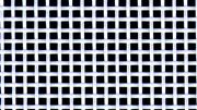 Polyesterfabric